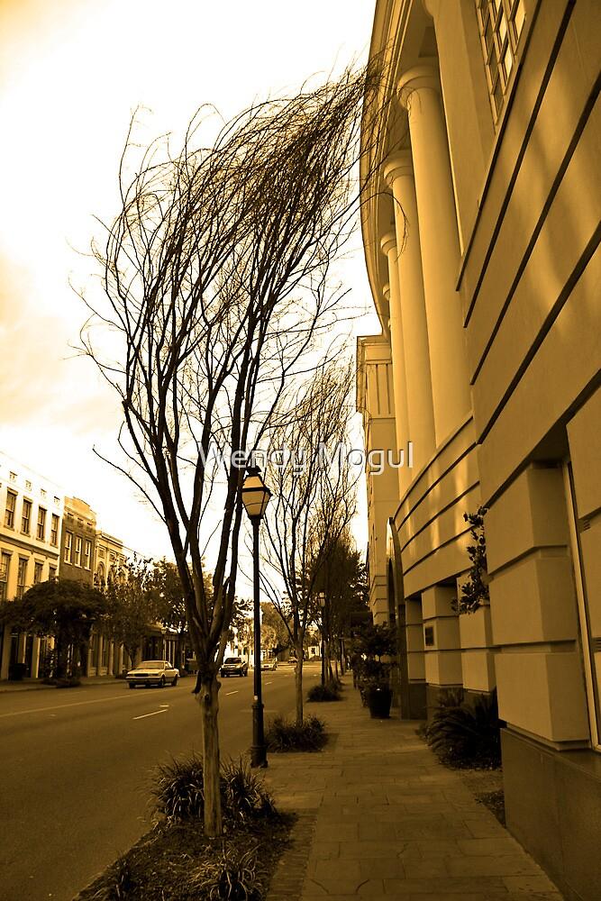 Windy City by Wendy Mogul
