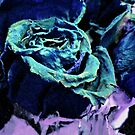 Roses Bleues by debidabble