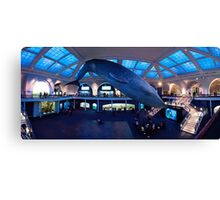 Blue Whale, Milstein Hall of Ocean Life Canvas Print