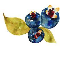 Fruity 8 by JenniferCortois