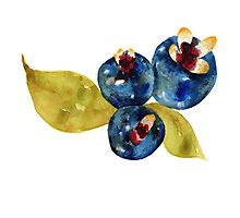 Fruity 8 Photographic Print