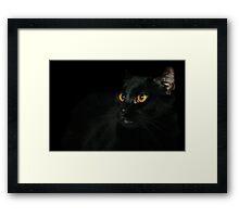 Halloween Bill Framed Print