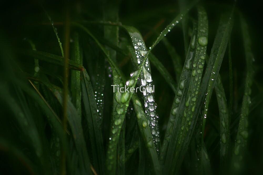 Rainy Days by TickerGirl