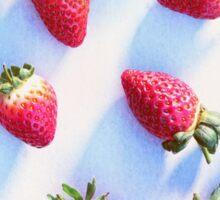 Sunset Strawberries Sticker