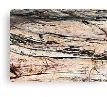 raw & rustic 1 Canvas Print