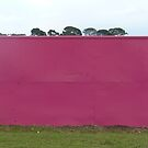 Pink Wall by Joan Wild