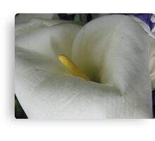 Pillow White Flora Canvas Print