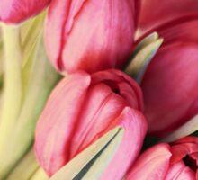 Vintage Tulips Sticker