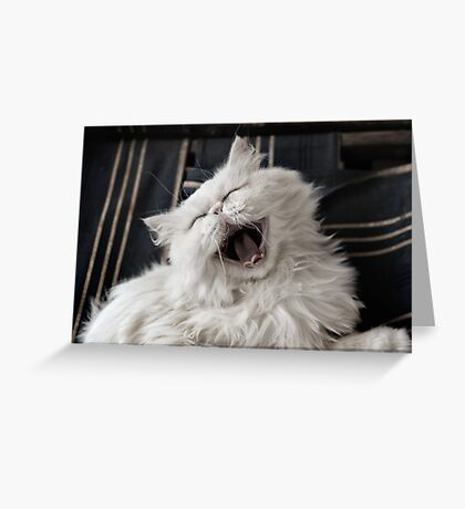 They say that NOTHING beats a good belly laugh!  Greeting Card