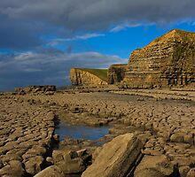 Nash Point by Andy Leslie