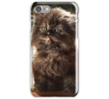 ...and whiskers on kittens... iPhone Case/Skin