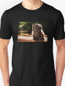 ...and whiskers on kittens... Unisex T-Shirt