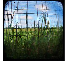 Through the Viewfinder and Fence Photographic Print