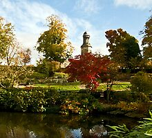 St Chads from The Quarry, Shrewsbury by Sheila Laurens