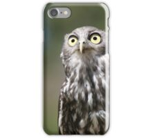 What a Hoot iPhone Case/Skin