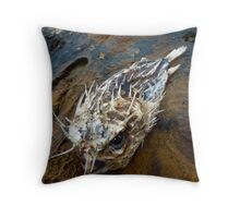 Porcupine Fish Throw Pillow