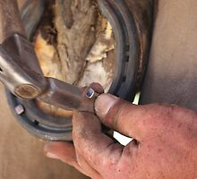 Hands of a farrier 3 by Samantha Bailey
