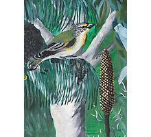 Bird Mural Photographic Print