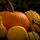 Gourds Of Autumn_1 by sundawg7