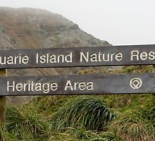 Macquarie Island Sign by Phill Danze
