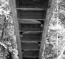 Under the Bridge by Photowalk