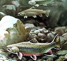 Three Trout  by Nathan Wallace