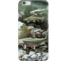 Three Trout  iPhone Case/Skin