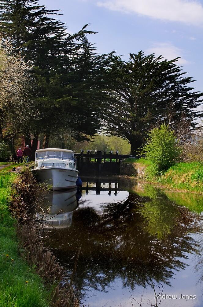 Ballyellin Lower lock, The Barrow Navigation, County Carlow, Ireland by Andrew Jones