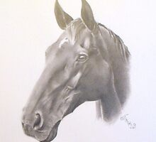 horsey by Ed Teasdale