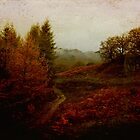 The Mountain Path by Nikki Smith