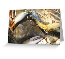 Multicoloured Crabs Greeting Card