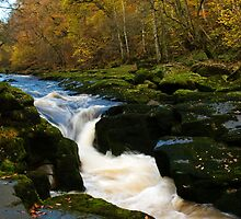 The Strid by Hilary Robertshaw