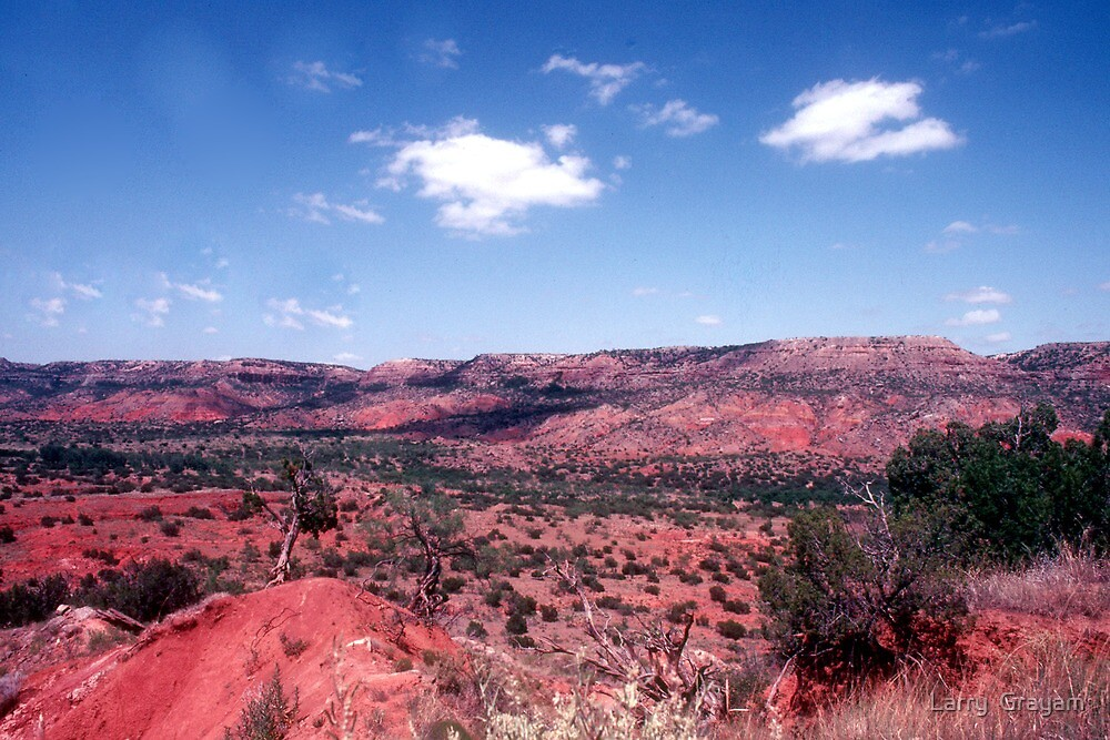 New Mexico by Larry  Grayam
