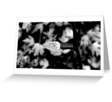 In preparation Greeting Card