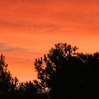 OCTOBER SUNSET  by LadyE
