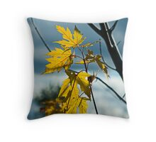 Still Hanging In There Throw Pillow