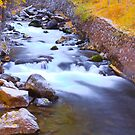 Rushing Waters by CDNPhoto