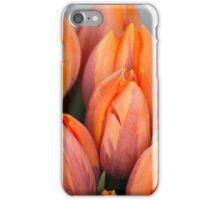 Bunch of Joy iPhone Case/Skin