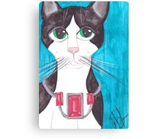 Tuxedo Cat, big eyes Canvas Print