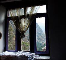 Girl looking out of window by Erdj