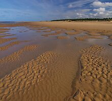 Holkham Beach by Roger Butterfield