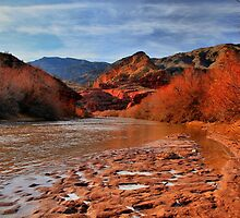 Virgin River Canyon by Jo Nijenhuis