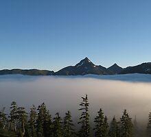 Backpacking Nakwasina fog by Chris Foster