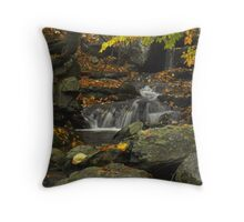 Forest Waterfall In Autumn Throw Pillow