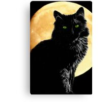 A Touch Of Magic Canvas Print