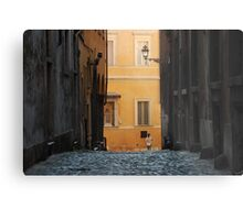 Orange Wall in a Roman Streetscape Metal Print
