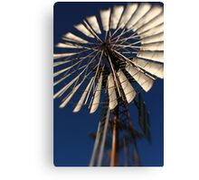 Wish for wind Canvas Print
