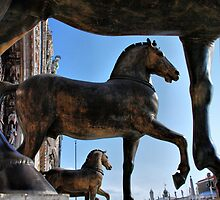 Horses at St Mark's Basilica by andreisky