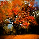 Autumns just a blur by Dave Parrish