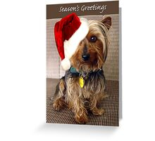 Sammy the Yorkie Season's Greetings Greeting Card